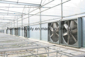 2017 Wall Mounted Galvanized Sheet 50 Inch Exhaust Fan pictures & photos