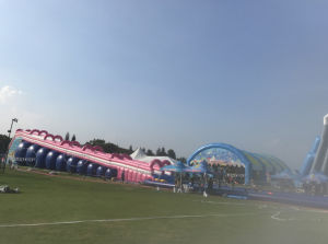 Hot Selling Cheap 10000 FT Inflatable City Street Water Slide for Sale pictures & photos