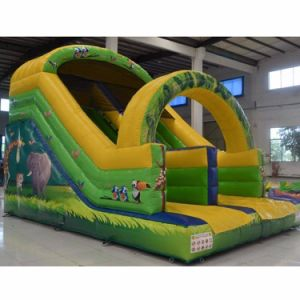 Sport Game and Play Ground Inflatable Moon House Bouncer pictures & photos