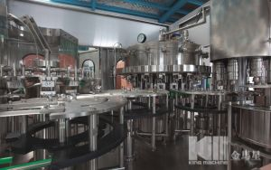 Automatic Bottle Gas Water Filling Machinery pictures & photos