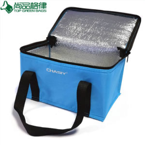 Insulated Thermal Familay Capacity Large Cooler Bag (TP-CB033) pictures & photos