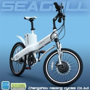 Electric Bicycle Seagull 20′ (HLEB20-620)
