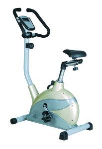 Exercise Bike (RM8701-2)