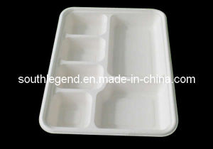Disposable Tray (SL-D-4004)