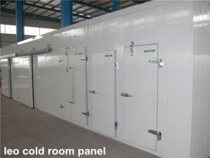 Pinenut Cold Storage pictures & photos