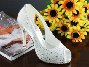 Fashion Ladies Wedding Shoes (Ogt0326)