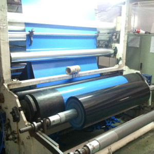 Coextruded Film for Food Packaging