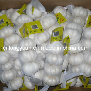 Pure White Garlic with Small Packing pictures & photos