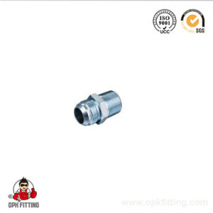 Male Bsp Hydraulic Fittings 1b pictures & photos