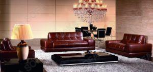 Modern Leather Sofa (HD-168)