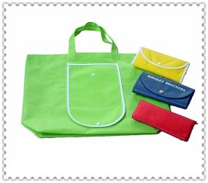 Shopping Bag (HGS-005)
