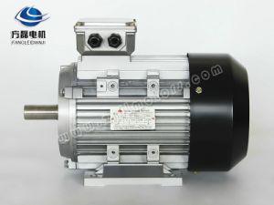 Yx3 Aluminum Electric Motor 3 pictures & photos
