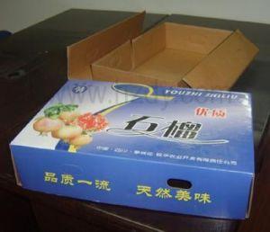 Shipping Carton (XH-046)