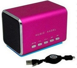 Portable Speaker (P3005)