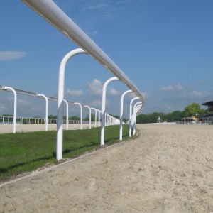 High Quality Horse Racing Fence pictures & photos
