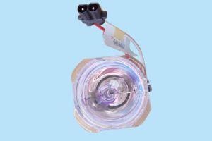 Bare Bulb (SHP59)