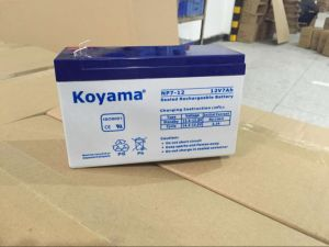 12V 7ah Lead Acid AGM Battery for Emergency Lighting, UPS, Surge Protector pictures & photos