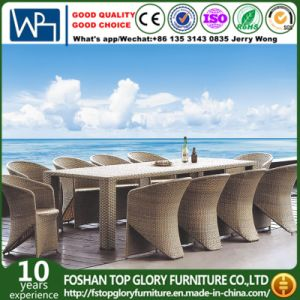10 Pieces Outdoor Wicker Dining Sets (TG-288) pictures & photos
