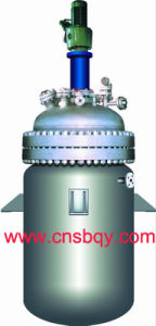 Sanitary Stainless Steel Reactor (SB55)