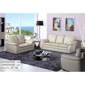 Living Room Leisure Sofa, Leather Sofa (WD-6791)