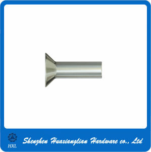 DIN 661 Stainless Steel Countersunk Head Rivets pictures & photos