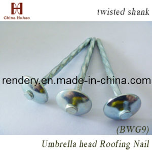 Screw/Galvanized Helical Shank Concrete Steel Nails pictures & photos