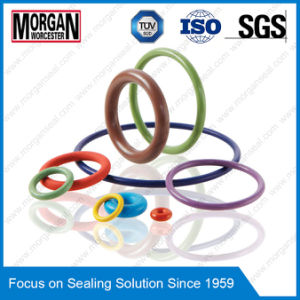 Jisb2401/As568/BS1516 Standard NBR/FKM/PTFE/PU/Silicone Rubber O Ring pictures & photos