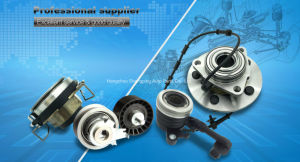 Wheel Hub Bearing Kit for Opel Vkba3650 pictures & photos