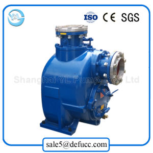 Large Volume Drip Irrigation Water Pump pictures & photos