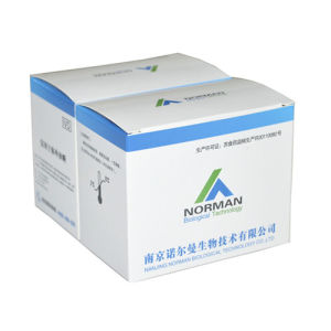 B2-Mg Rapid Test Kits for Medical Diagnostic pictures & photos