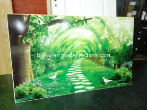Cheapest Machine Glass Printer with UV LED Lamp, Ly-2513 UV Printer pictures & photos