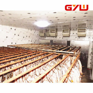High Temperature Drying Room Made in China pictures & photos