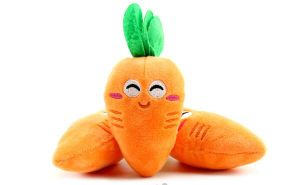 Carrot Pattern Plush &Stuffed Squeaky Pet Toy for Dog pictures & photos