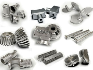 Stainless Steel Gloss Forged Parts with Electrical -Coating Finishment pictures & photos