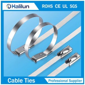 10mm*750 Solid Stainless Steel Self-Hold Cable Tie in Factory  pictures & photos