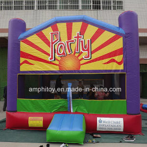 Party Theme Inflatable Bouncer/Inflatable Castle for Sale pictures & photos