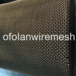 8 Mesh 0.8mm Acid / Alkali Resistant Titanium Mesh Screen pictures & photos