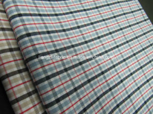 Cotton Yarn Dyed Checks Fabric for Shirt pictures & photos