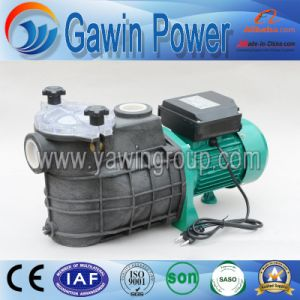 Hot Sales Fcp Series Swimming Pool Filter Centrifugal Pump pictures & photos