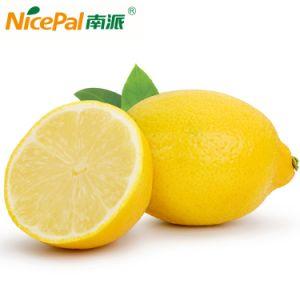 100% Natural Lemon Fruit Juice Powder/Halal Certified pictures & photos