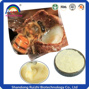 Lyophilized Royal Jelly Powder pictures & photos