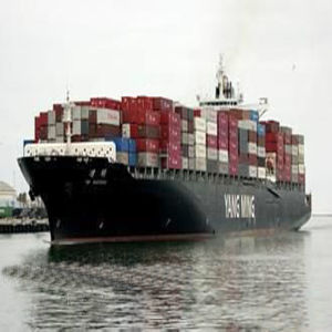Professional Sea Freight to Apapa, Nigeria pictures & photos