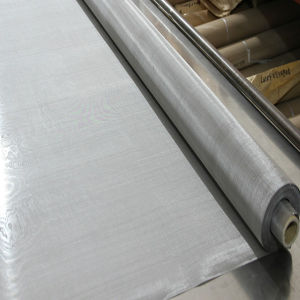 Stainless Steel Woven Wire Mesh/Cloth/Screen pictures & photos