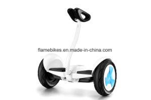 Electric Self-Balancing Unicycle with 2 Wheelers pictures & photos
