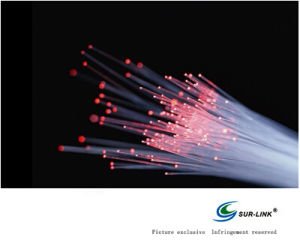 Fiber Optical Cables for Lighting pictures & photos