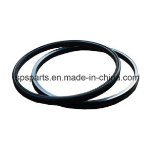 Oil Seal Group/Floating/Duo Cone/ Metal Face/ Duty Seal pictures & photos