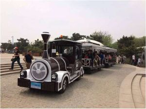 Tourist Fun Train for Amusement Park pictures & photos