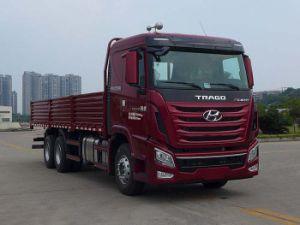 Hyundai 20-30 Ton Loading Cargo Truck 6X4 pictures & photos