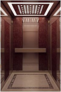 Qualified Passenger Elevator with Rose-Gold Mirror (ALD-KC012) pictures & photos