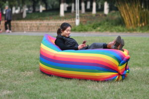 2017 New Popular Outdoor Inflatable Air Sofa pictures & photos